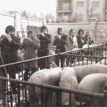 10Pifferi 1974